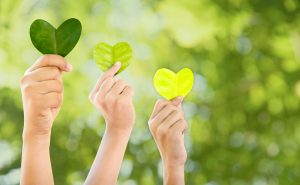 Hands,Holding,Green,Heart,Shaped,Tree,,Planting,Trees,,Loving,The
